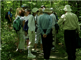 Wissahickon Nature Walk